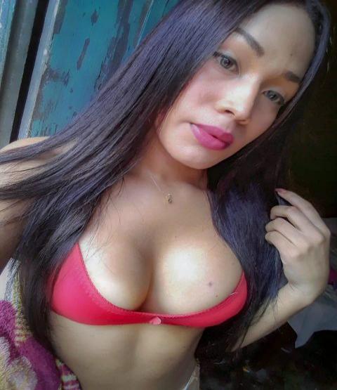 Travesti Acompanhante p Letcia Bragana 8169124
